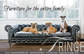 animal friendly furniture. Picture Animal Friendly Furniture