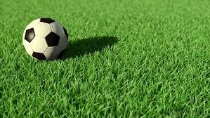 grass soccer field. Outdoor Artificial Grass For Soccer Field