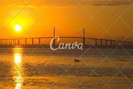 Pelican Passing Tampa Bay Fl Skyway Bridge Photos By Canva