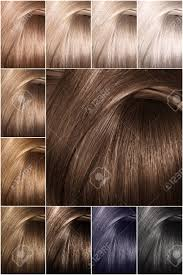 Color Chart For Hair Color Color Chart For Tints Hair Color Palette With A Wide Range Of