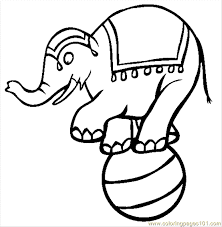 Circus Elephant Coloring Page Free Elephant Coloring Pages