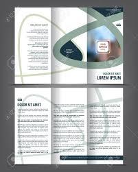 Vector Tri Fold Brochure Template Design Concept Business Leaflet