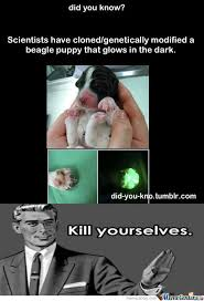 More Stupid Tumblr Shit... by imrathan - Meme Center via Relatably.com
