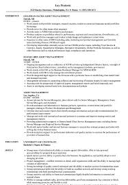 Asset Management Resume Samples Velvet Jobs