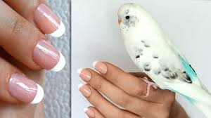 French manicure at home without tape or stickers - DIY nail ...