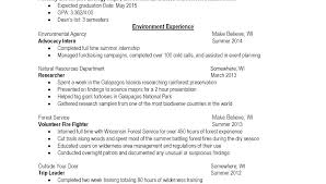 Two Types Of Resumes Different Kinds Of Resumes Blaisewashere Com