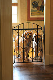 mesmerizing metal dog gates in antietam iron works