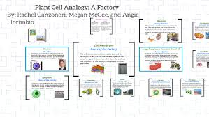 Cell City Analogy Examples Cell Analogy A Factory By Rachel Canzoneri On Prezi
