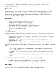 Project Officer Cv 1 Liaison Officer Resume Templates Try Them Now