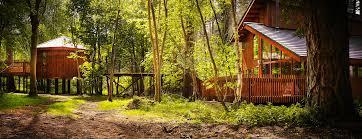 Log Cabin U0026 Lodge Holidays  Blackwood Forest HampshireFamily Treehouse Holidays Uk