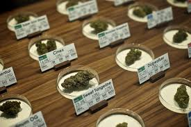oregon lawmakers suggest adjustments to laws