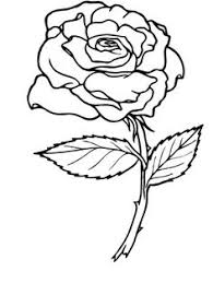 644df1363721b6f43156e35bf6cecd7e free coloring adult coloring flowers coloring page free flowers online coloring mmm good on science fair project flowers food coloring