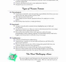 Work History Resume Example Phenomenal Examples Of Resumes With Little Work Experience Resume 60