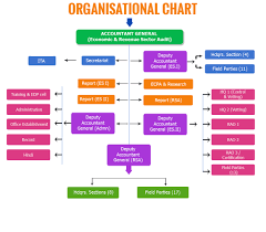 Cag Organisation Chart Organisational Chart Accountants General Odisha Cag