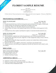 Sample Resume For Job Enchanting Sample Resume For Designer Jobs Combined With Web Designer Sample