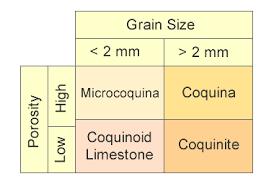 Coquina Limestone Composed Almost Entirely Of Fossil Debris