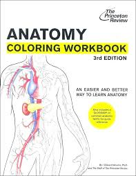 Human Anatomy Coloring Pages Free Printable Anatomy Coloring Pages
