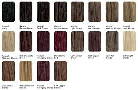 Aveda Hair Color Chart World Of Template Format