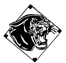 Image result for woodville high school panthers