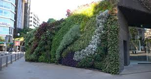2014 shengjie artificial plant wall fake wall 16  on green garden wall artificial with artificial modular wall natural green plant wall high quality plant
