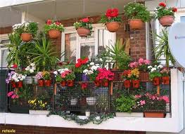 Small Picture Gardening In Small Balcony India Best Balcony Design Ideas Latest