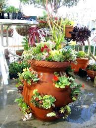 big lots flower pots large outdoor flower pots garden in a pot ideas splendid succulent pot