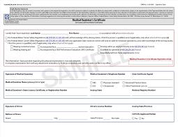 Physical Assessment Form Physical Assessment Form Template Sample Templates 13