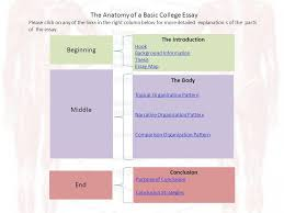 the anatomy of an essay ldquo the anatomy lesson of dr nicolas tulp the anatomy of a basic college essay