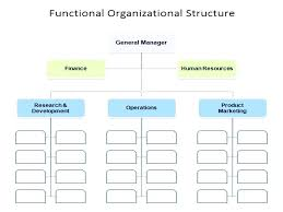 Company Management Structure Template Template Excel Organizational