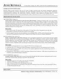 Executive Resume Samples 2017 Executive Resume Examples To Follow 24 Example O Sevte 12