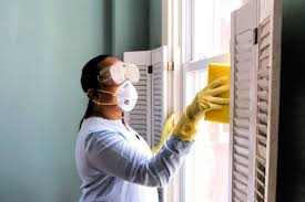 how to remove mold from walls for good