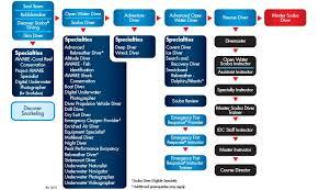Padi Courses Flowchart Scuba Diving Certification Scuba