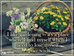 Garden Quotes Custom Gardening Quotes 48 Heart Warming Quotes About Gardening Nature