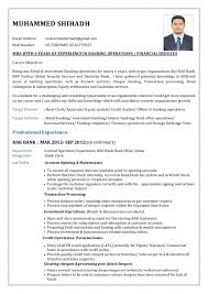 Cv For Bank Job Cv Format Banking Finance Resume Sample