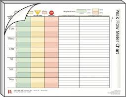 Peak Flow Meter Chart Peak Flow Meter 134405559613 Asthma Peak Flow Meter Chart