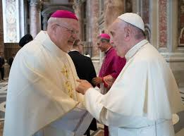 Image result for bishop anders arborelius