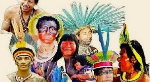 Resultado de imagem para ONU abre consulta sobre mecanismo de direitos humanos dos povos indígenas