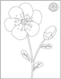 Roses, lilies, daisies, and a variety of flowers to color. 14 Original Pretty Flower Coloring Pages To Print Kids Activities Blog