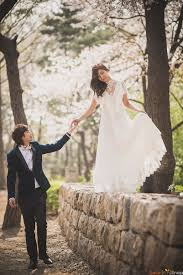 Korea Cherry Blossoms Pre Wedding At Yonsei University In Spring