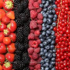 Hasil gambar untuk menyimpan buah berries