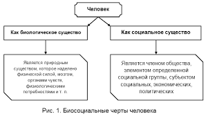 Взаимосвязь биологического и социального в личности Взаимозависимость биологического и социального