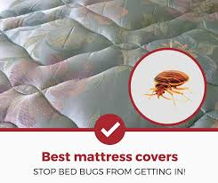 Top 5 Best Bed Bug Mattress Covers Protectors 2018 Edition