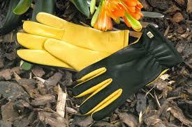 best gardening gloves. Gold Leaf Dry Touch Gloves Best Gardening
