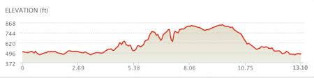 Half Marathon Flying Pig Marathon