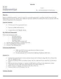 Resume Title Sample
