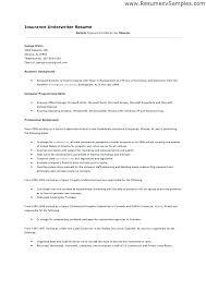 Underwriting Assistant Resume Skinalluremedspa Com