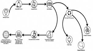 Coffee Production Process Flow Chart Flow Chart Of Recycling Process Of Coffee Waste Download