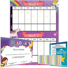 Potty Training Chart For Girls Potty Training Chart Reward Sticker Chart Girls Theme