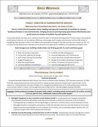 Resume Career Summary Example Musiccityspiritsandcocktail Com