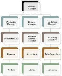 line staff organization